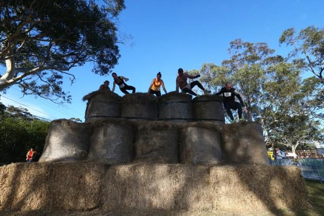 Tough Bloke Challenge Sydney 2014
